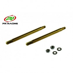 Front Shock Shaft x2pcs (Ti 46 mm)