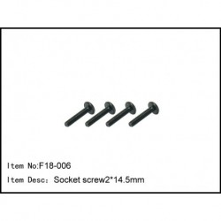 Socket screw2.0*17.5mm