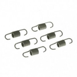 Short tuned pipe springs (6pcs)