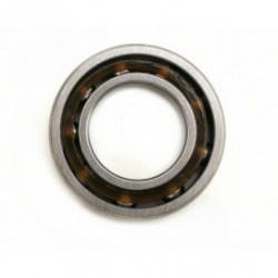 M4R REAR BALL BEARING 21 13x25x6mm (1Pc.)